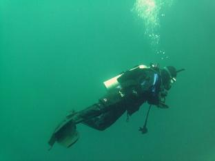 Ensenada Diving