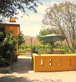 CASA DONA LUPE ENSENADA WINERY