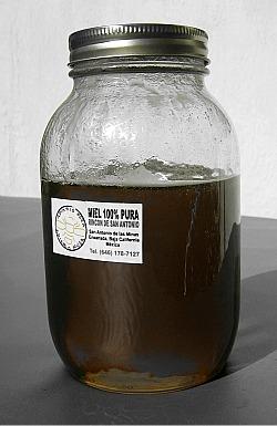 Miel virgen cosechada en Ensenada